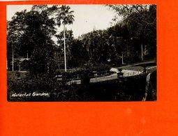 Malaysia - Waterfall Garden - Perrang Année 1934 -Malay Malaysia, PENANG, Waterfall Garden - Malaysia
