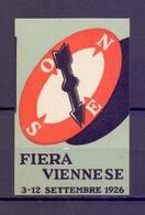 CINDERELLA ERINNOFILIA FIERA VIENNA 1926 (GIUGN1900B86) - Erinnofilia