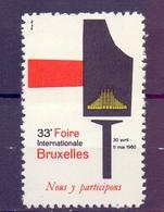 CINDERELLA ERINNOFILIA FOIRE BRUXELLES  1960 (GIUGN1900B93) - Erinnofilia