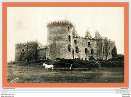 A530 / 413  56 - Château De SUSCINIO - Unclassified