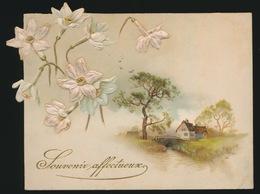 OUD KAARTJE  ( KARTON ) 12 X 9 CM    RELIEF - Cartes Postales