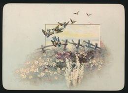 OUD KAARTJE  ( KARTON ) 14 X 9 CM    VOGELS - Cartes Postales