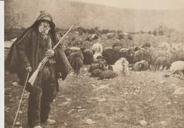C. P. - PHOTO - CORSE 1900 - SCÈNES ET TYPES - BERGER - EDITIONS DU MOUFLON - REPRODUCTION - C.02 - France