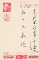 Japan 1981, Entier Postal, Ganzen - Oies