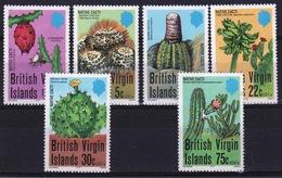British Virgin Islands 1979 Queen Elizabeth Set Of Stamps Celebrating Cacti. - British Virgin Islands