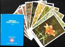 [MD3552] CPM - REGIONE PIEMONTE - SERIE 5 - 10 CARTOLINE CON POCHETTE - PRINCIPALI PIANTE PROTETTE  - Non Viaggiata - Agricoltura