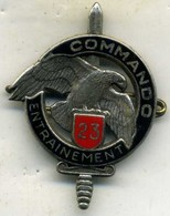 Insigne Centre D Entrainement Commando N° 23___drago - Landmacht