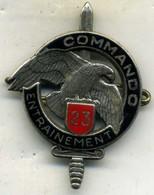 Insigne Centre D Entrainement Commando N° 23___drago - Army