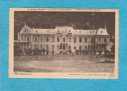 Saou ( Drôme ). - Château De La Forêt De Saou. - Environs De Dieulefit. - Otros Municipios