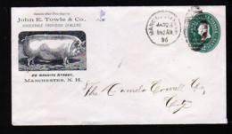 """2 C. Ganzsache Nmit Abbildung """"Schwein"""" - Gebraucht 1896 Ab Manchester - Ferme"""