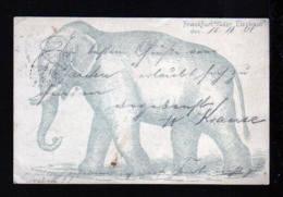 "1901 - 5 Pf. Privat Ganzsache Frankfurt/O. - Bild ""Elefant"" - Gebraucht - Eléphants"