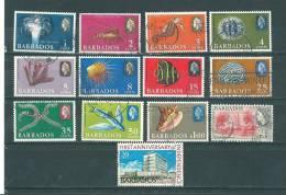 Barbade: Lot  - 231 + Entre 243 Et 255 Oblit - Barbades (1966-...)