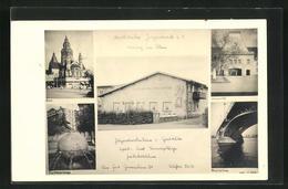 AK Mainz Am Rhein, Katholisches Jugendwerk, Dom, Rheinbrücke, Universität, Fischtorbrunnen - Mainz