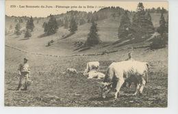 Les Sommets Du Jura - Pâturage Près De La Tôle (vaches Au Pâturage ) - France
