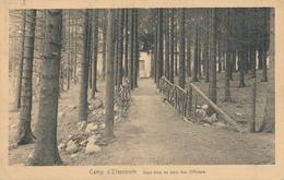 CPA - Belgique - Camp D'Elsenborn - Sous-bois Au Parc Des Officiers - Elsenborn (camp)