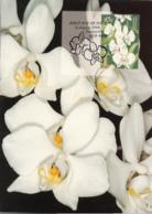 Australia 1998 Maxicard Sc 1681-1684 Orchids Joint With Singapore - Cartes-Maximum (CM)