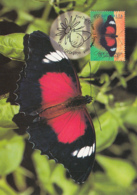 Australia 1998 Maxicard Sc 1690-1694 Butterflies - Cartes-Maximum (CM)
