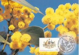 Australia 1999 Maxicard Sc 1717 45c Coat Of Arms Citizenship Act 50th Anniversary - Cartes-Maximum (CM)