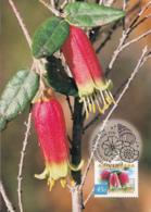 Australia 1999 Maxicard Sc 1734-1737 Flowers Flora And Fauna - Cartes-Maximum (CM)