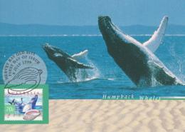 Australia 1999 Maxicard Sc 1738-1742 Coastal Life Flora And Fauna - Cartes-Maximum (CM)