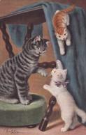 Three Cats , 1909 - Cats