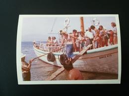 30 PHOTOS COULEURS RECTANGULAIRES À BORDS BLANCS FAMILLE - Personnes Anonymes