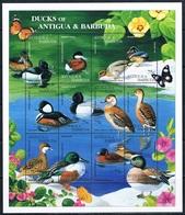 Bloc Sheet Oiseaux Canards Birds Ducks Neuf  MNH ** Antigua & Barbuda 1995 - Canards