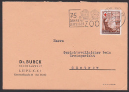 Croix Rouge Leipzig Zoo Löwen MWSt. Leo, DDR 385 24 Pfg. Rotes Kreuz Red Cross Nach Güstrow 7.11.53 - Brieven En Documenten