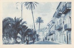 Loano - Corso Roma - Le Palme Centenarie Del Lungomare - Andere Steden