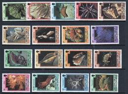 British Virgin Islands 1979 Queen Elizabeth Full Set Of Stamps Celebrating Marine Life. - British Virgin Islands