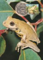 Australia 1999 Maxicard Sc 1784-1789 Pond Life Fauna - Cartes-Maximum (CM)