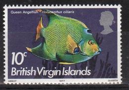 British Virgin Islands 1975 Queen Elizabeth Single 10c Stamp From The 1975 Definitive Fish Set. - British Virgin Islands