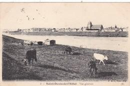 45. SAINT DENIS DE L'HOTEL . CPA  . VUE GÉNÉRALE. ANNEE 1905 + TEXTE - Autres Communes