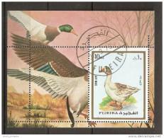 Bf. 131 Fujeira 1973 Uccelli  Birds Oiseaux Oche Anatre   Sheet Perf. - Oies