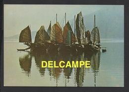 DF / BATEAUX / VOILIERS DE TRANSPORT / JONQUES CHINOISE À HONG KONG - Sailing Vessels