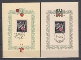 Drittes Reich , Böhmen Und Mähren 1943 , 2 Sonderstempelkärtchen , Prag Und Kladno - Germany