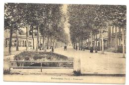 Rabastens Promenade - Rabastens