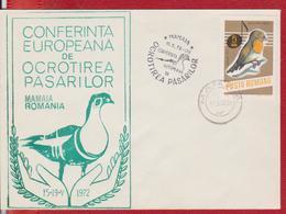 BIRD BIRDS GEESE ROMANIA - Oies