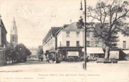 R192584 Princess Alices Tree And South Street. Eastbourne. W. Brooker. 1904 - Mondo