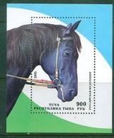 D41- Animal. - Horses