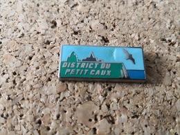 1 PINS EDF DISTRICT PETIT  DE CAUX - EDF GDF