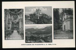 Sonntagberg Bei Waidhofen Ybbs Ledermann - Waidhofen An Der Ybbs