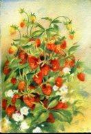 """Les Fruits De France """"Les Fraises Des Bois"""" - Editions Barré Dayez - Année 1942 - Flowers, Plants & Trees"""