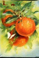 """Les Fruits De France """"Les Oranges"""" - Editions Barré Dayez - Année 1942 - Flowers, Plants & Trees"""