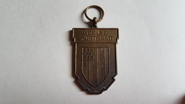 Geel Medaille Geelse Sportraad - Toeristische