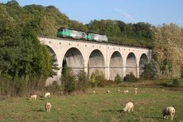 Haute-Amance. Locomotives A1A-A1A Série 68000 Ou 68500. Cliché Pierre Bazin. 11-10-2005 - Trains