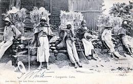 RAR!!! Guadalajara (Mexiko) Cargando Cana - Orig.Karte Gel1905 Stempel Guadalajara, 2 Marken, Nachportostempel, Unikat - Mexiko