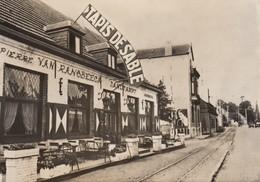 Postcard Hekelgem Zandtapijt My Ref  B23661 - Affligem