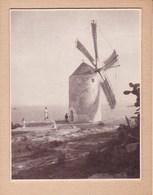 IBIZA CANARIES ESPAGNE Moulin à Vent 1930 Photo Amateur Format Environ 7,5 X 5,5 Cm - Lieux