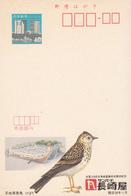 Japan, Postal Stationery, Postal Card, Birds, MNH**. - Paons